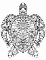 Coloring Adults Games Pages Animal Mandala Adult Printable Books sketch template