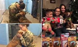 US soldier reunited with her missing dog after several ...