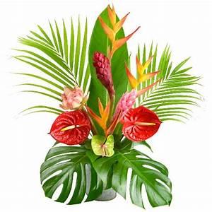 fleurs tropicales dessin With affiche chambre bébé avec fleur exotique bouquet