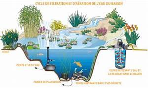 bassin a poisson rouge With plan de bassin de jardin