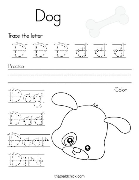 letter  alphabet writing practice  bald chick