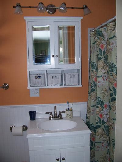 paint colors to brighten a bathroom thriftyfun