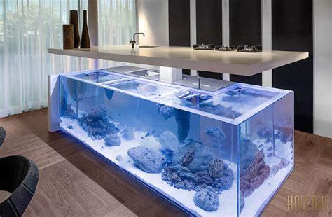 kitchen counter  giant saltwater aquarium beneath