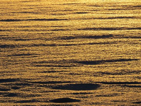 free sea coast sand horizon sun sunset field sunlight texture wave