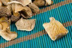 Austernpilze Selber Züchten : austernpilze z chten auf holz so wird 39 s gemacht ~ Orissabook.com Haus und Dekorationen