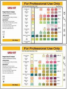 Medical Laboratory Equipment Rapid Urine Dipstick Test