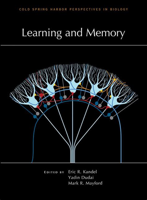 learning  memory cover image