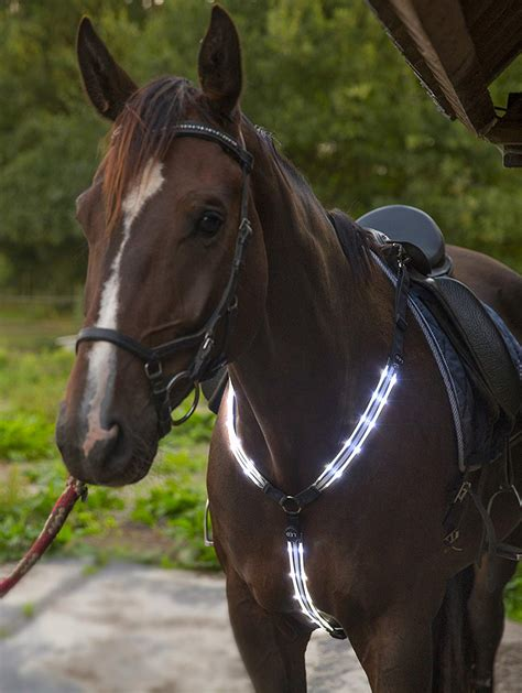 horse tack viz hi breastplate led equestrian collar adjustable gear rechargeable visibility horseback sturdy comfortable usb riding safety