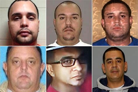 14 members of bronx based smuggling ring arrested for allegedly bringing 1 5m in cocaine
