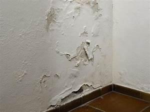Feuchtigkeit In Der Wand Was Tun : so dichten sie eine feuchte kellerwand von innen ab bauhaus ~ Sanjose-hotels-ca.com Haus und Dekorationen