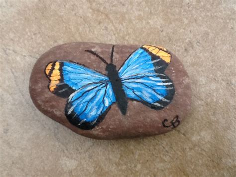 Butterfly And Stones by Blue And Orange Butterfly Painting Rocks