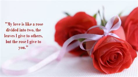 rose quotes  show  love  wow style