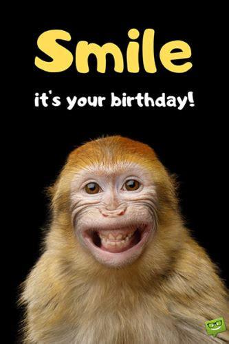 funny happy birthday images smile   birthday