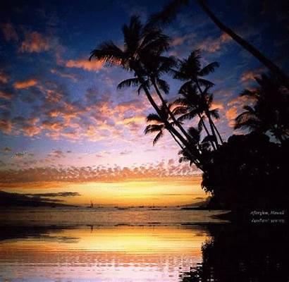 Hawaii Beach Animate Sunsets Del Sunset