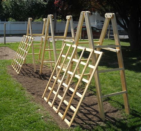 how to make a trellis tomato ladders and cucumber trellises the year harvest