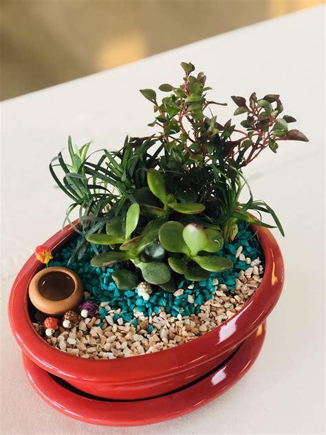 แบบทดสอบก่อนเรียน วิชาขยายพันธุ์พืช | Other Quiz - Quizizz