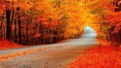 Fall Widescreen Wallpapers Subwallpaper Season