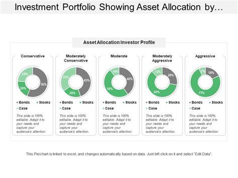investment portfolio showing asset allocation  investor