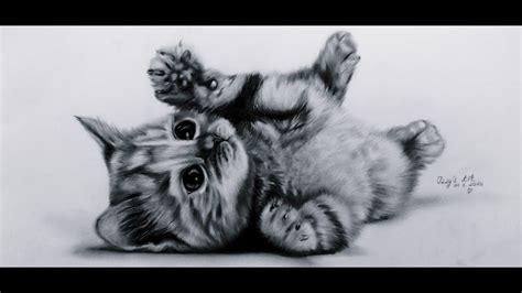 kitten cat draw drawings cute baby
