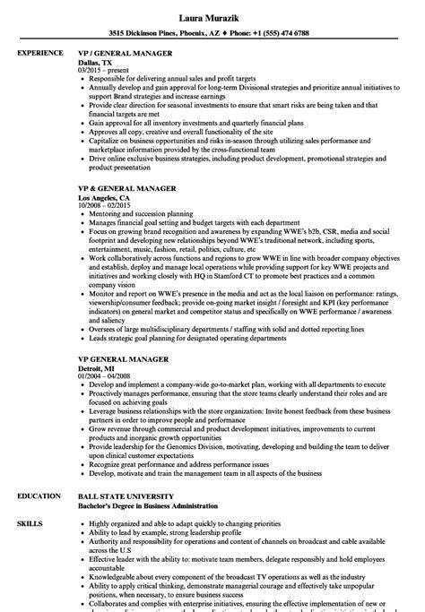 General Manager Resume by Vp General Manager Resume Sles Velvet