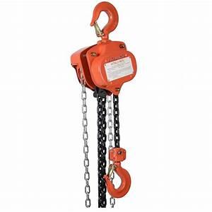 Industrial Manual Chain Hoist 4000lb Load  10ft Lift