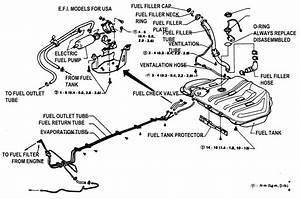 Nissan Stanza Fuel Line Diagram