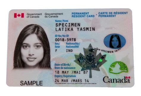 permanent resident form canada permanent resident card sle www imgkid the