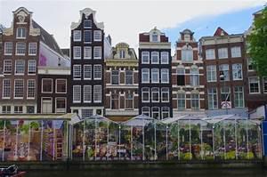 Bloemenmarkt Flower Market Amsterdam for Visitors