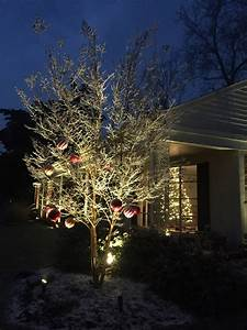 Uplighting, Is, A, Fantastic, Alternative, Or, Addition, To, Christmas, Lights