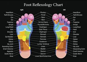 Reflexology Chart Top Of Foot An Overview Of The Different Types Of Reflexology With