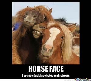 Horse Face Meme | www.pixshark.com - Images Galleries With ...