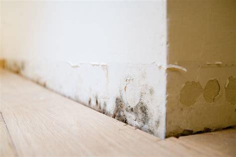 probleme humidité chambre immoweb 1er site immobilier en belgique tout l 39 immo ici