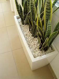 Jardiniere Interieur : pots et plantes le bon accord marie claire ~ Melissatoandfro.com Idées de Décoration