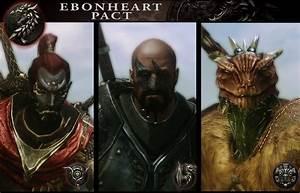 Elder Scrolls Online Ebonheart Pact Faction Guides ESO