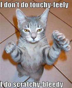 View All - Funny Animal Pictures With Captions - Very ...