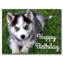 Siberian Husky Puppy Happy Birthday