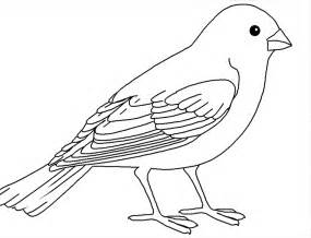HD wallpapers bird coloring page