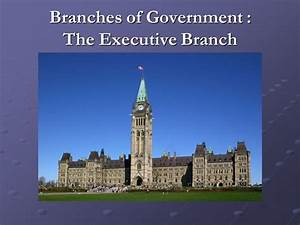 Branches of Government : The Executive Branch - ppt video ...
