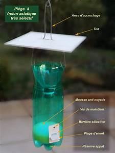 Piege A Frelon : l essentiel du d veloppement durable ~ Farleysfitness.com Idées de Décoration
