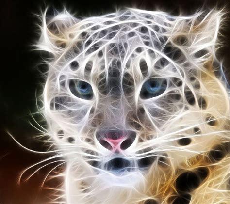 Fractal Animal Wallpaper - fractals in nature animals tag animal fractal
