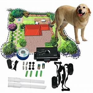 new underground electric dog pet fencing fence shock With buried electric dog fence