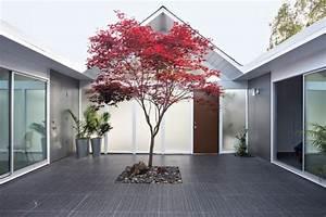 japanischer ahorn im garten 50 gestaltungsideen With whirlpool garten mit bonsai 50 years old