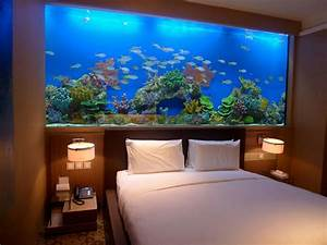 Great Idea For Our Basement Room Devider  Fish Tank