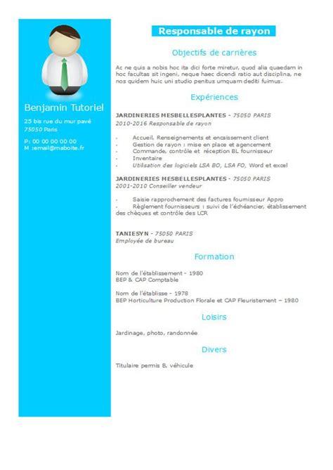 modèle cv gratuit open office les 25 meilleures id 233 es concernant curriculum vitae