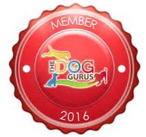bed bath and bonz bed bath n bonz boarding daycare pet grooming
