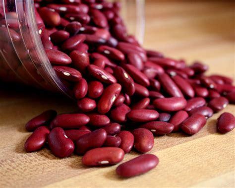 manfaat dan khasiat kacang merah bagi kesehatan sitkes com