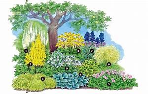 Baum Vorgarten Immergrün : pflanzplan vorgarten ~ Michelbontemps.com Haus und Dekorationen