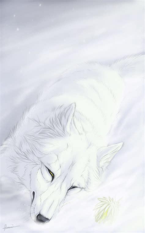 Wolfs Kiba Wallpaper by Kiba Wolf S Mobile Wallpaper 344888 Zerochan
