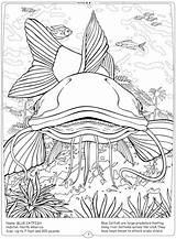 Coloring River Catfish Mississippi Printable Getcolorings Habitat Getdrawings sketch template