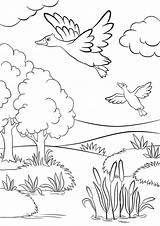 Coloring Pages Forest Lake Grassland Grass Ducks Animals Trees Duck Under Summer Printable Fly Sheet Animal Getcolorings Flower sketch template